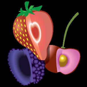 Piccoli Frutti CIF